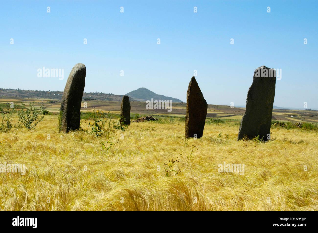 Four steles in the stele field of Gwudit Judith in fields of teff Aksum Ethiopia - Stock Image
