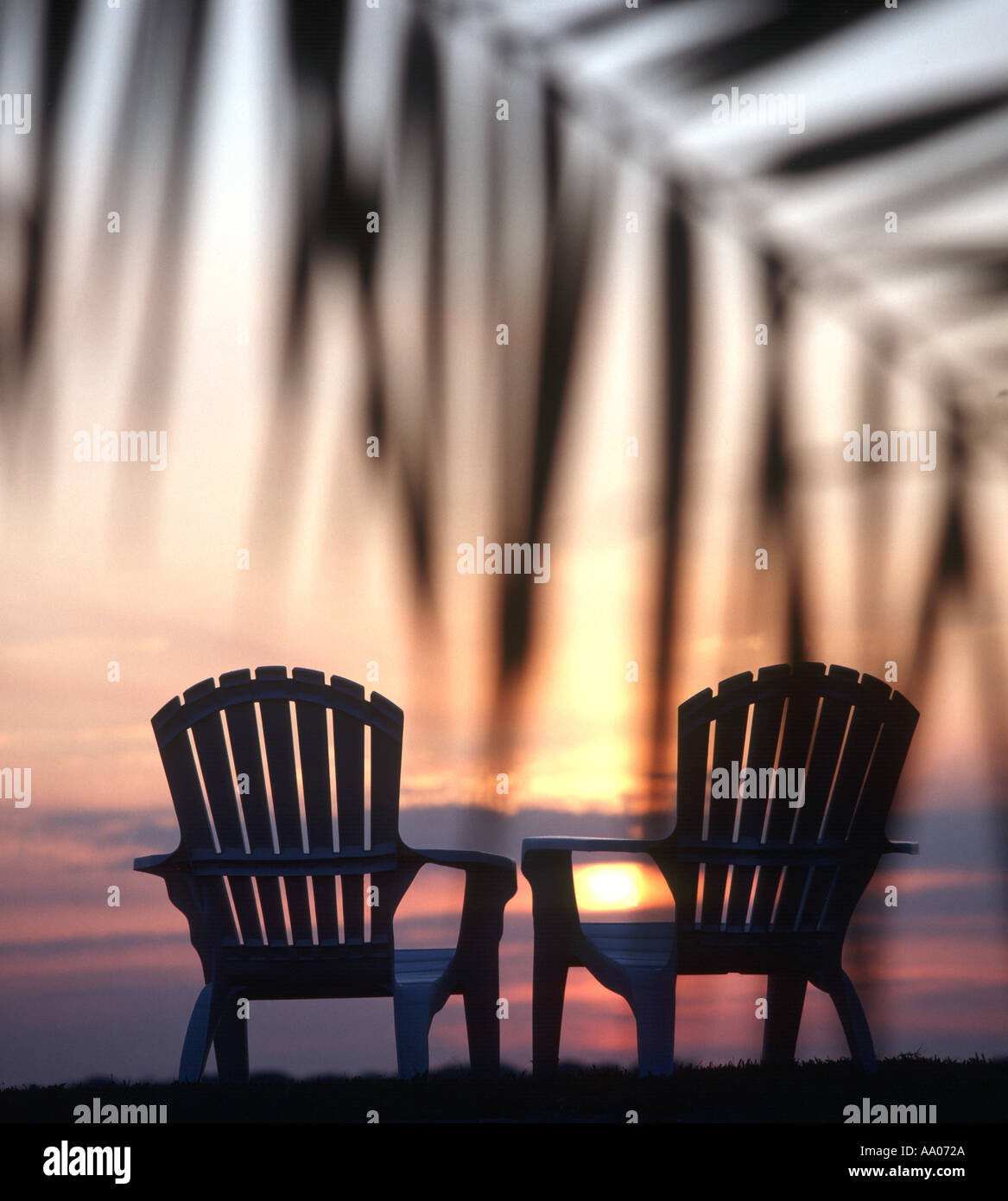 Adirondack Chairs Silhouetted On Palm Lined Beach At Sunset