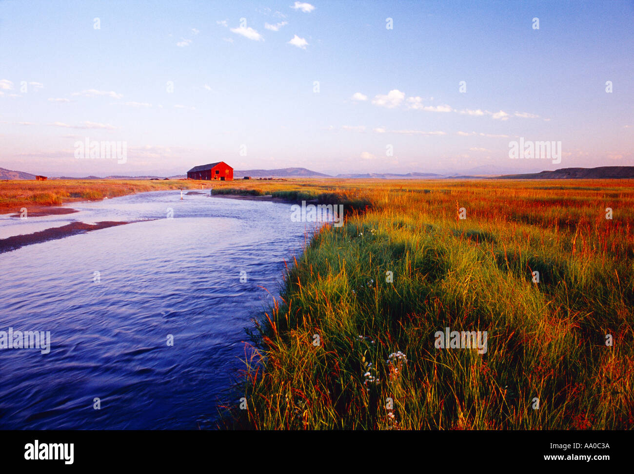 The South Fork of the South Platte River flows through rich pastureland with a rustic red barn in the background / Colorado, USA - Stock Image