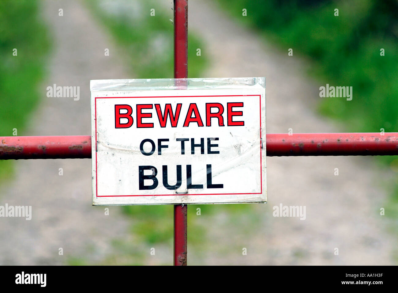 A 'Beware of the bull' sign in Ireland. - Stock Image