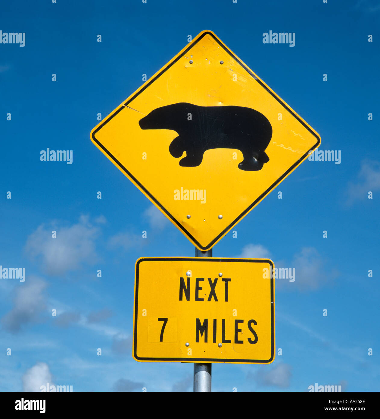 Road Sign For Black Bears Crossing Florida Usa Stock Photo Alamy
