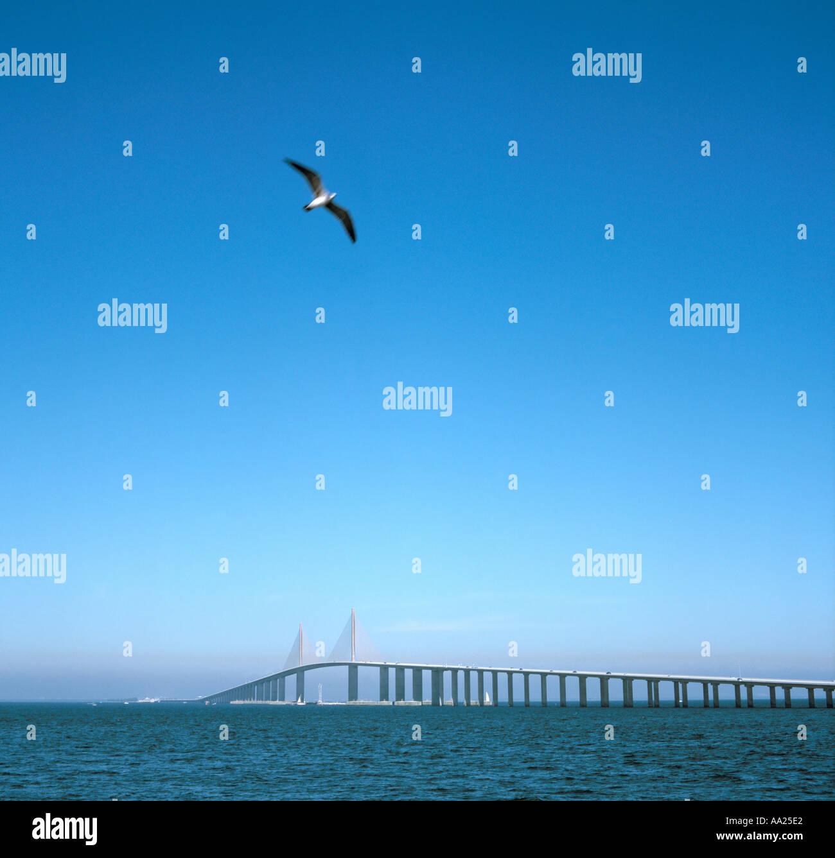 Sunshine Skyway, Gulf Coast, Florida, USA - Stock Image