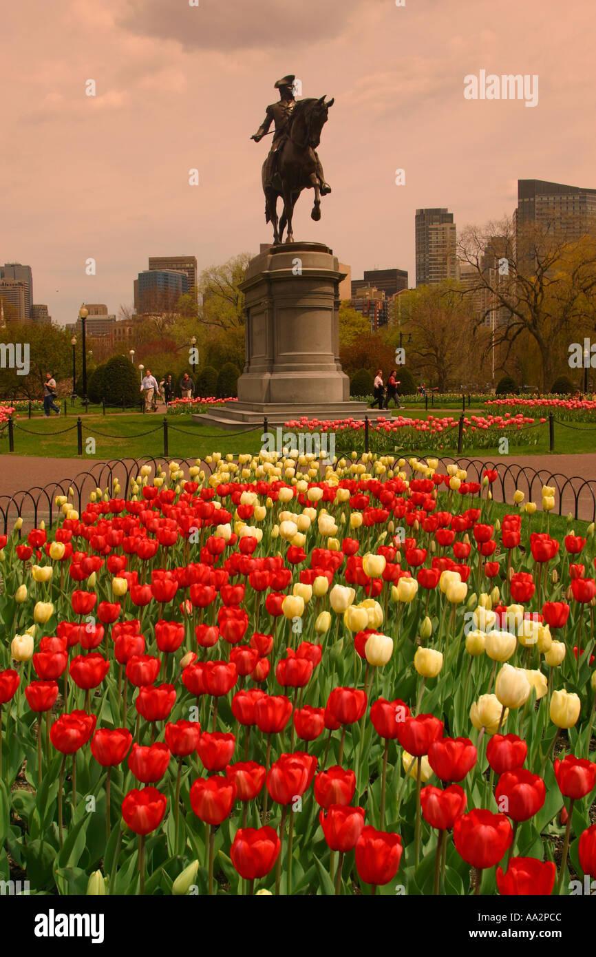 Tulips George Washington Statue Public Stock Photos & Tulips George ...