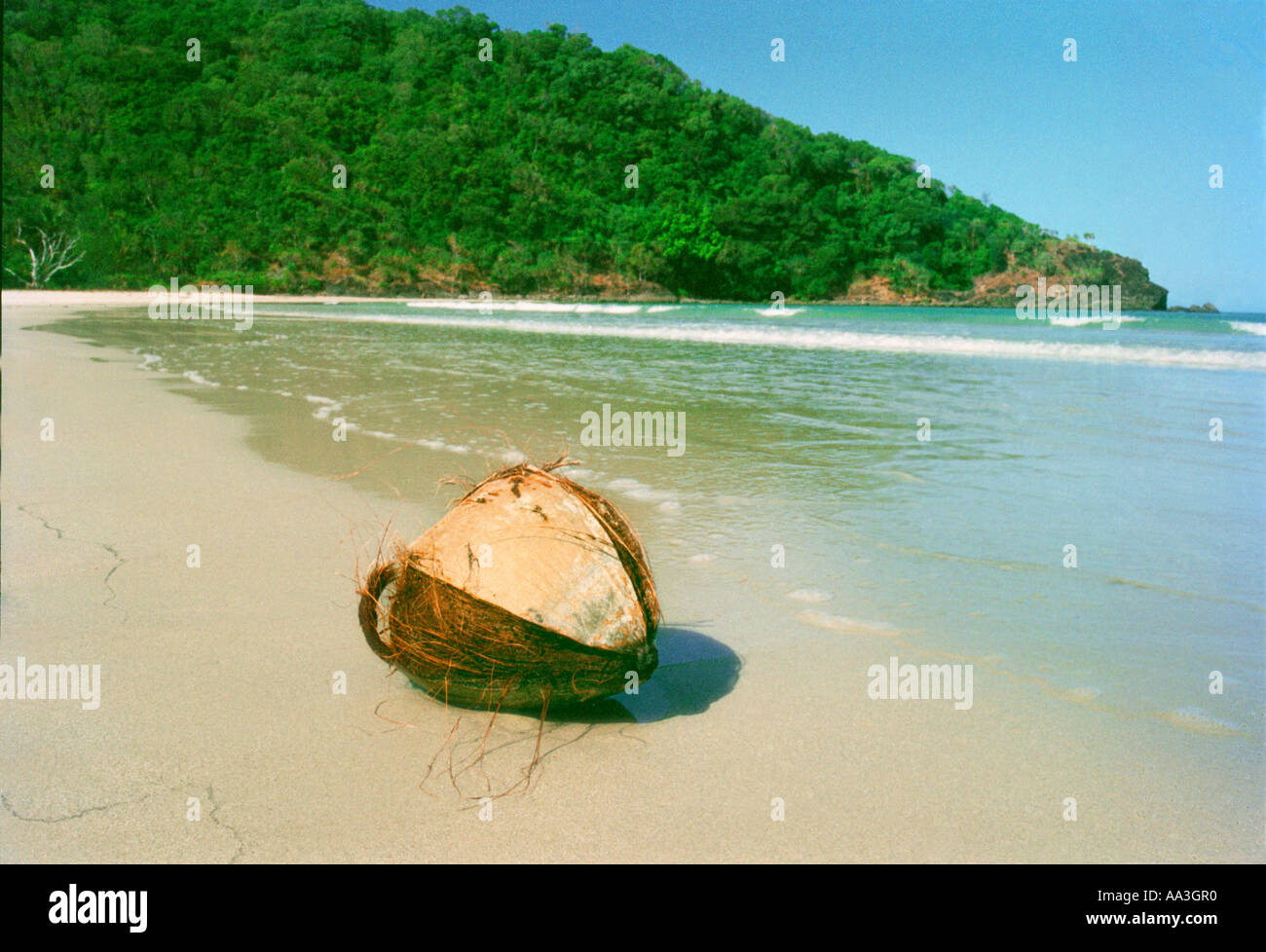 At the idyllic beach of CAPE TRIBULATION north of Cairns the dense tropical rainforest meets The Great Barrier Reef - Stock Image