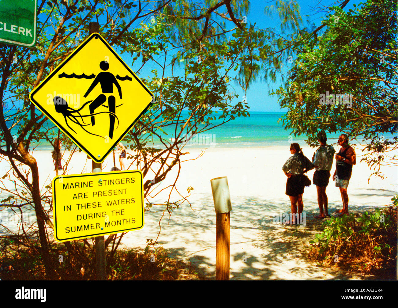 Warning sign for marine stingers such as box jellyfish on the idyllic beach of CAPE TRIBULATION Great Barrier Reef Australia - Stock Image