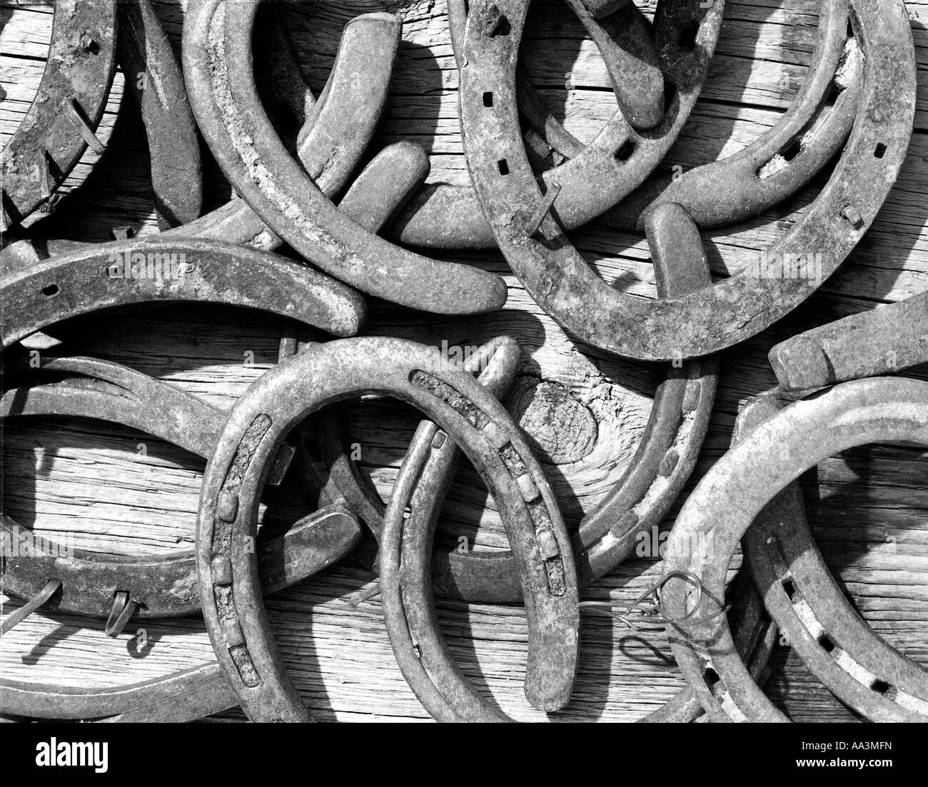 Old horseshoes piled onto an old wooden barn plank - Stock Image