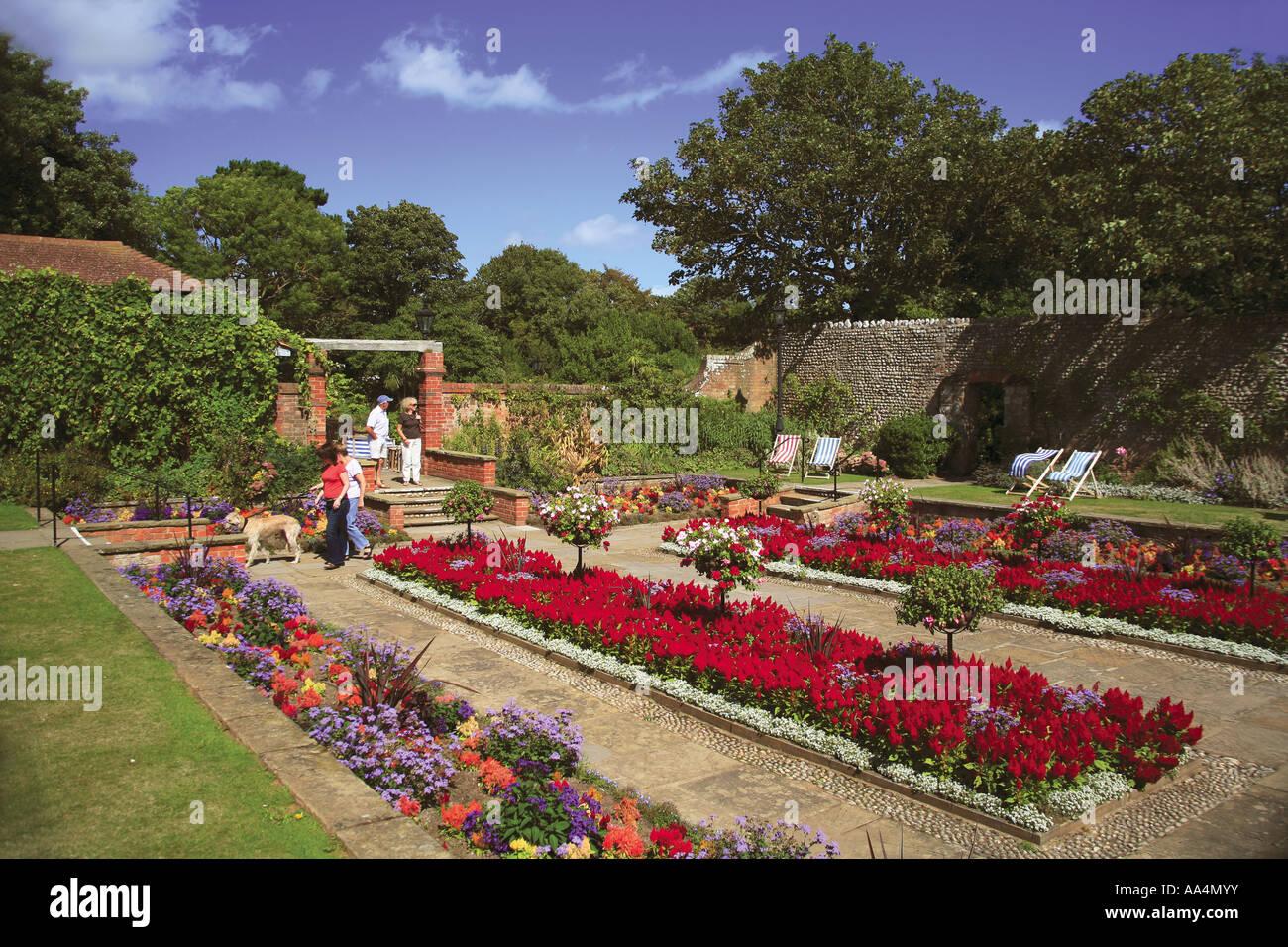 Fuchsia Plant Uk Stock Photos & Fuchsia Plant Uk Stock Images - Page ...