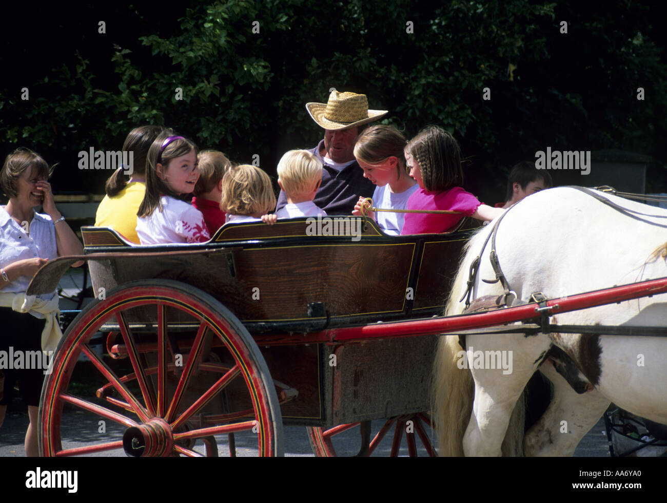 CHILDREN ENJOY  RIDE  IN A PONY TRAP IN IRELAND - Stock Image