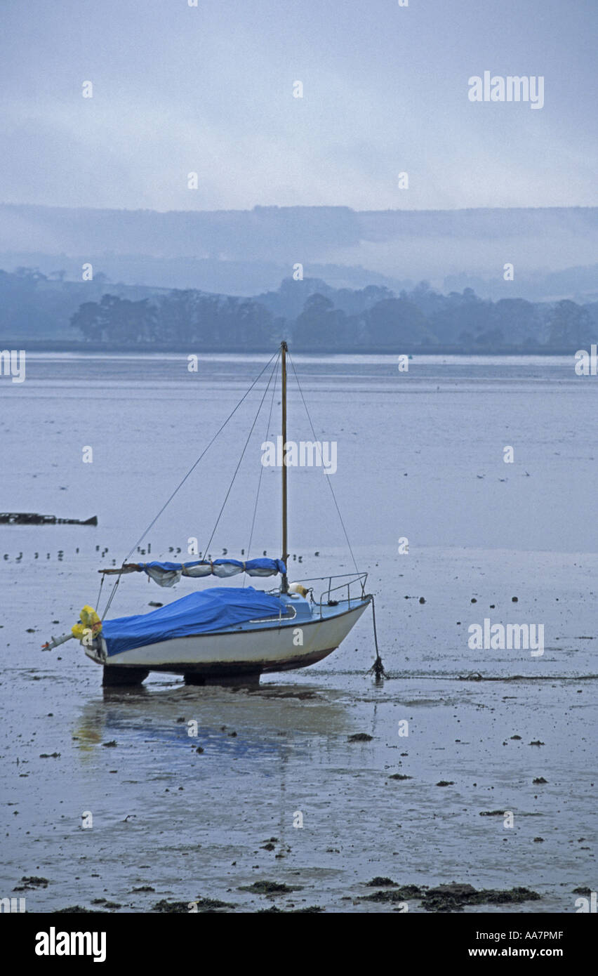 Exe estuary Devon 2005 - Stock Image