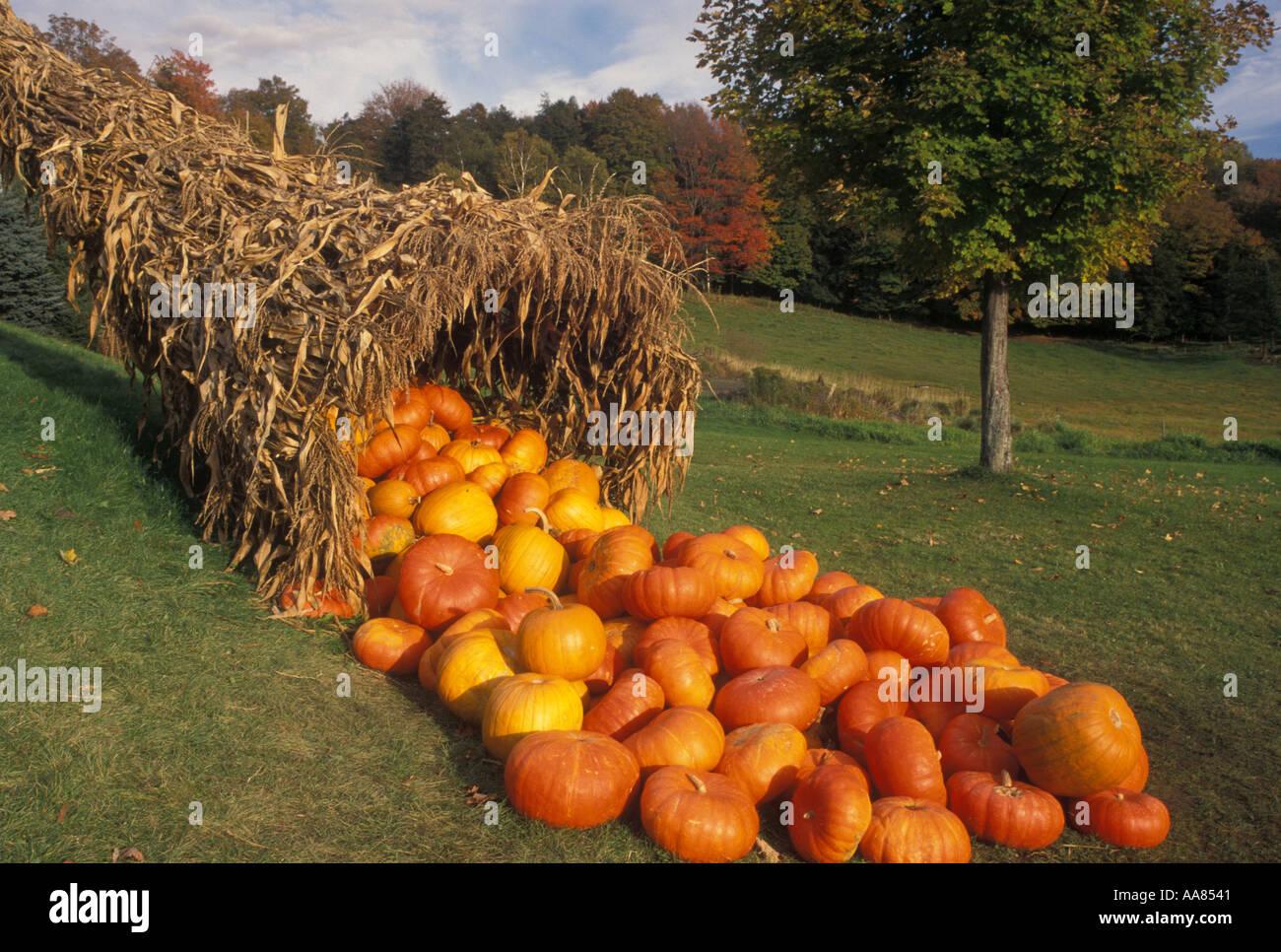 AJ4578, Vermont, VT, New England - Stock Image