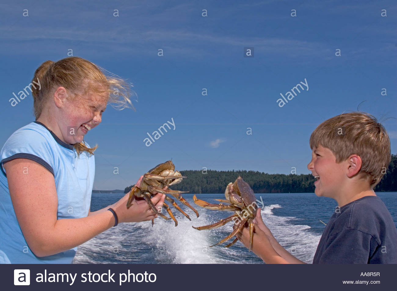Children holding freshly caught crabs - Stock Image