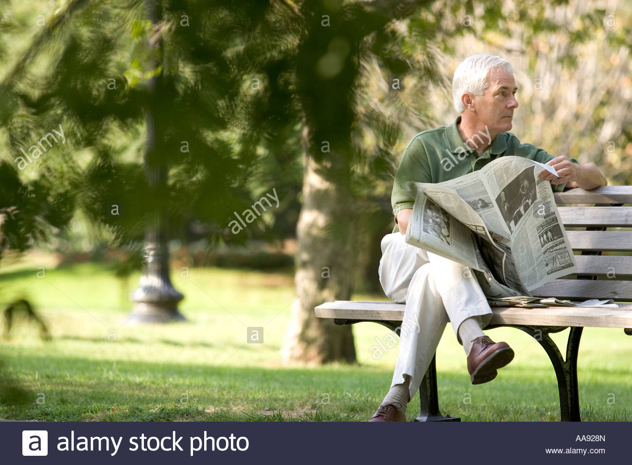 senior man reading newspaper on park bench stock photo: 12554180 - alamy