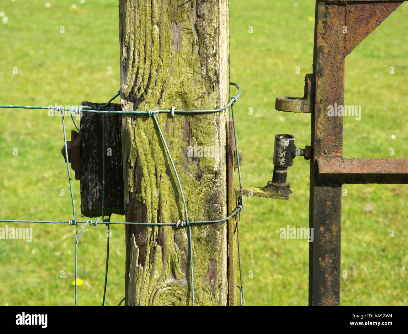 Rural gate gatepost with barbed wire - Stock Image