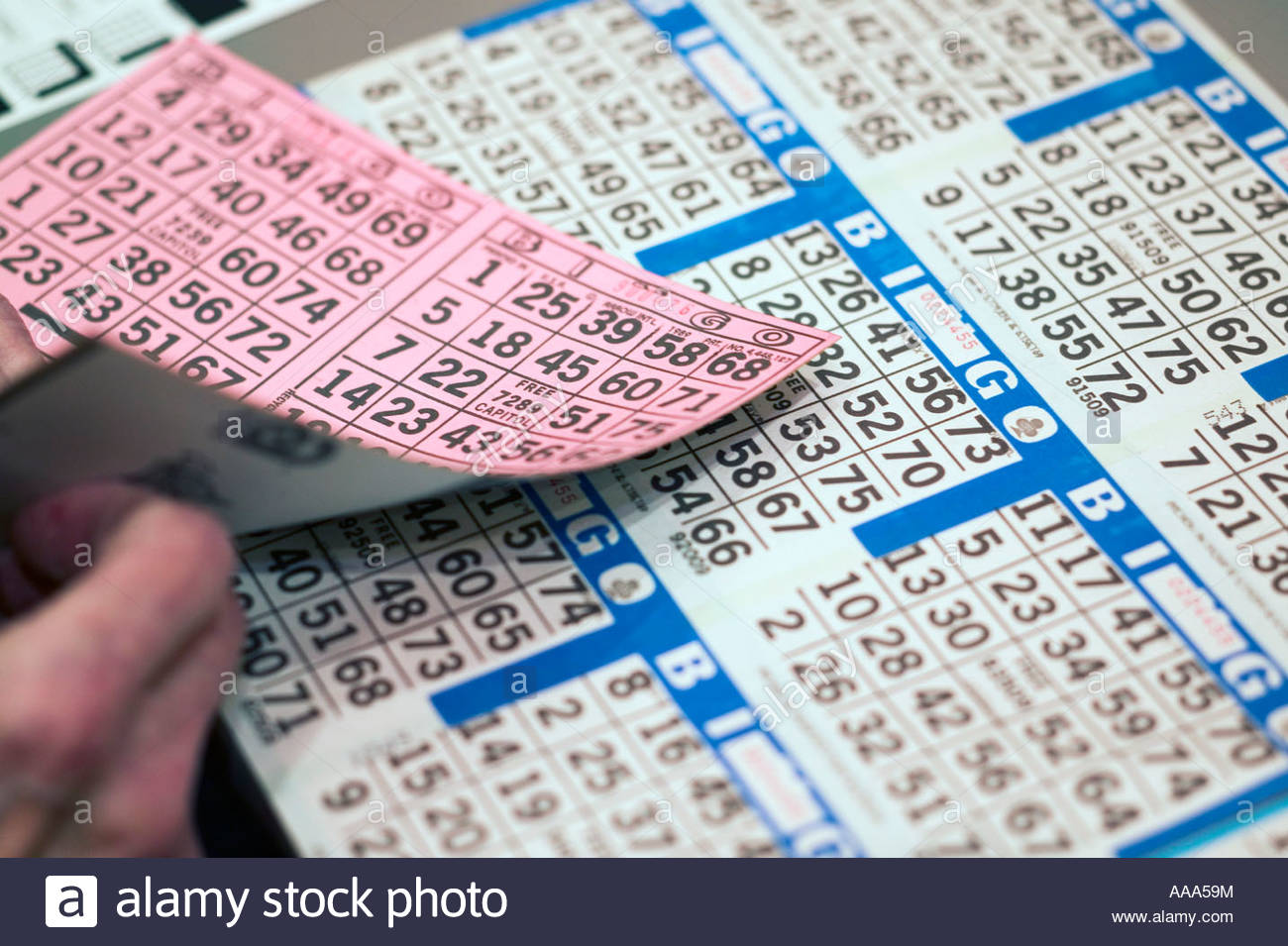 Bingo cards - Stock Image