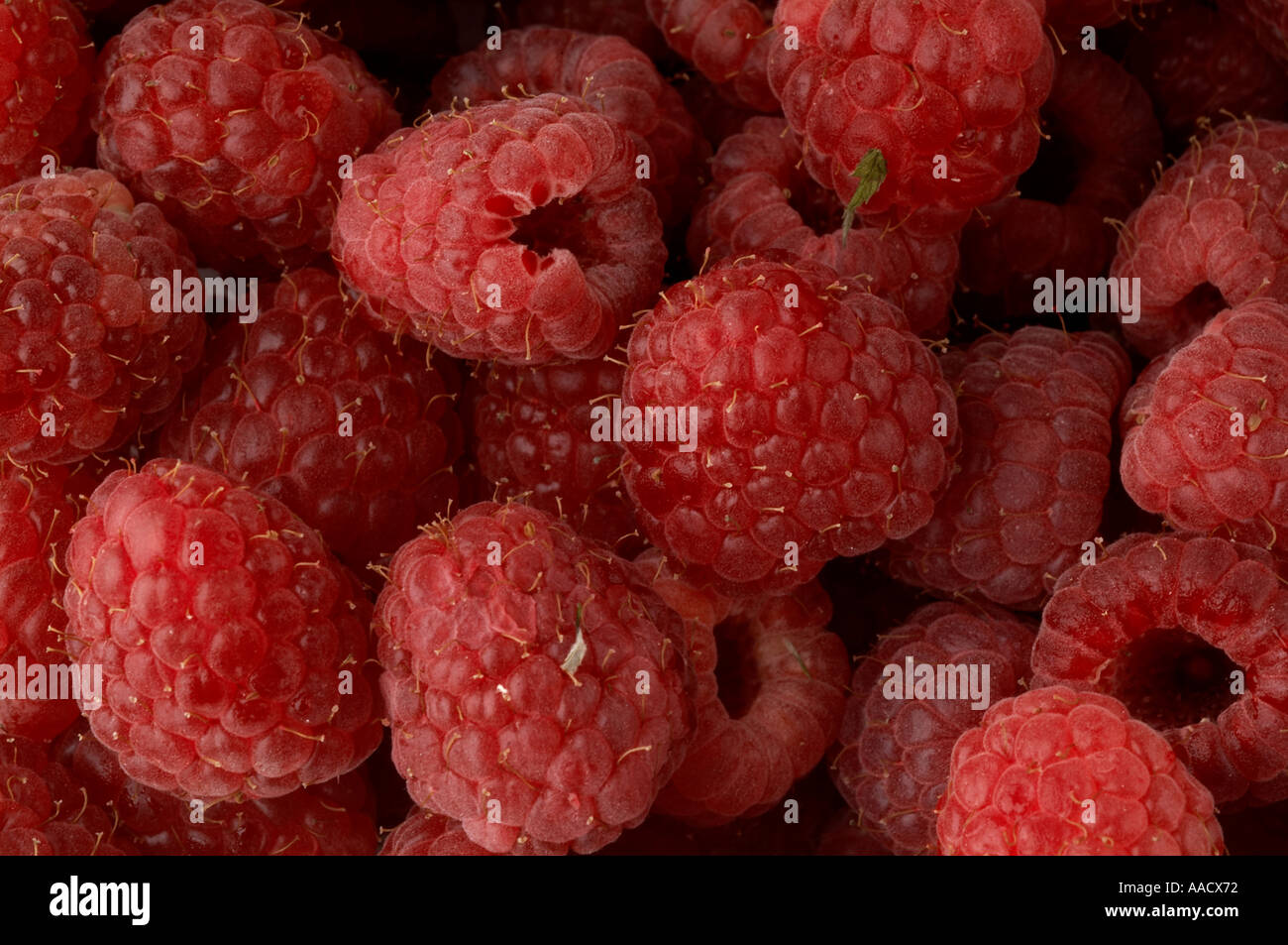 Rasberry Berry Berries Fruit Health Healthy Living Diet Vitamins Stock Photo 4110961 Alamy