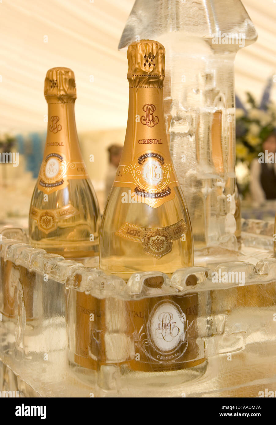 Luxury Cristal Champagne in Ice Bar Stock Photo