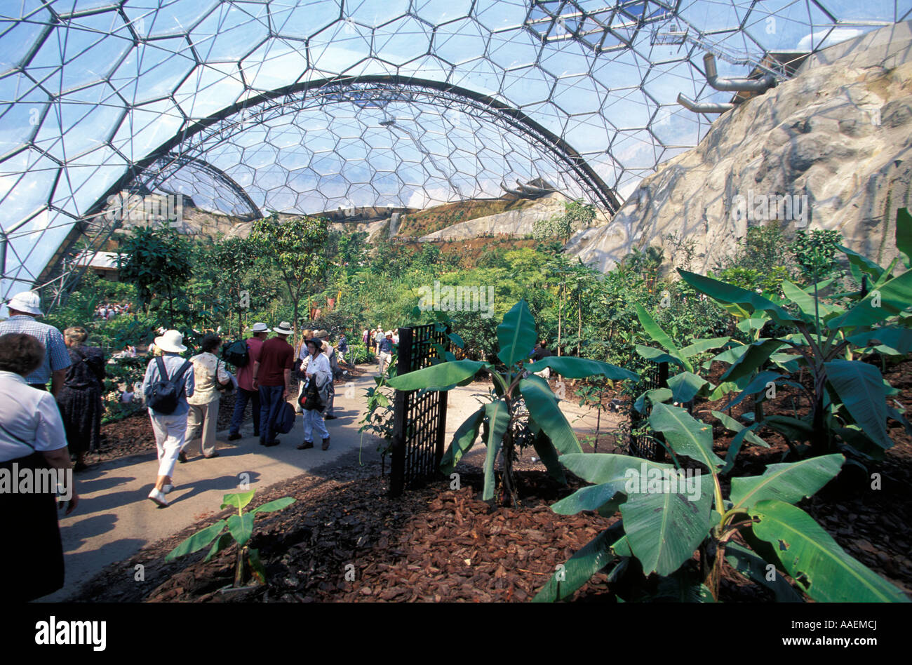The Eden Project St Austell Cornwall England United Kingdom Stock Photo