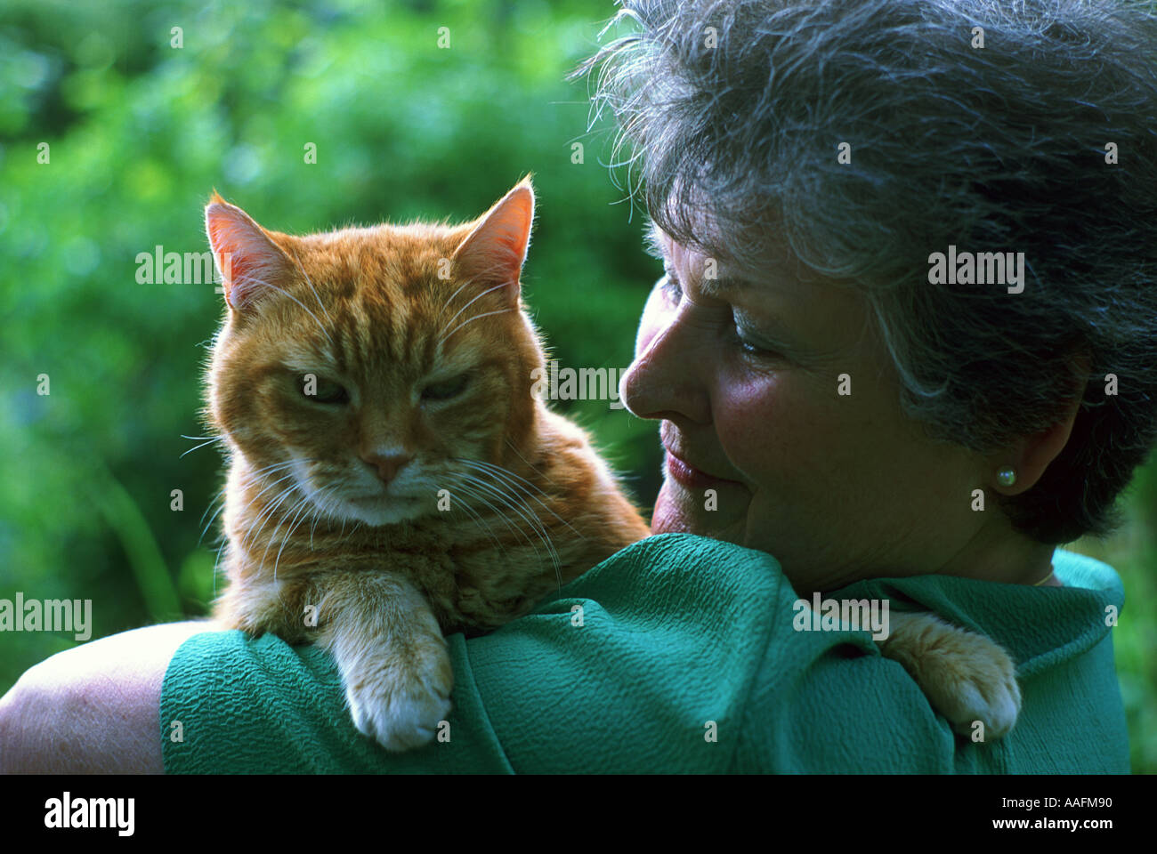 woman holding a ginger cat - Stock Image