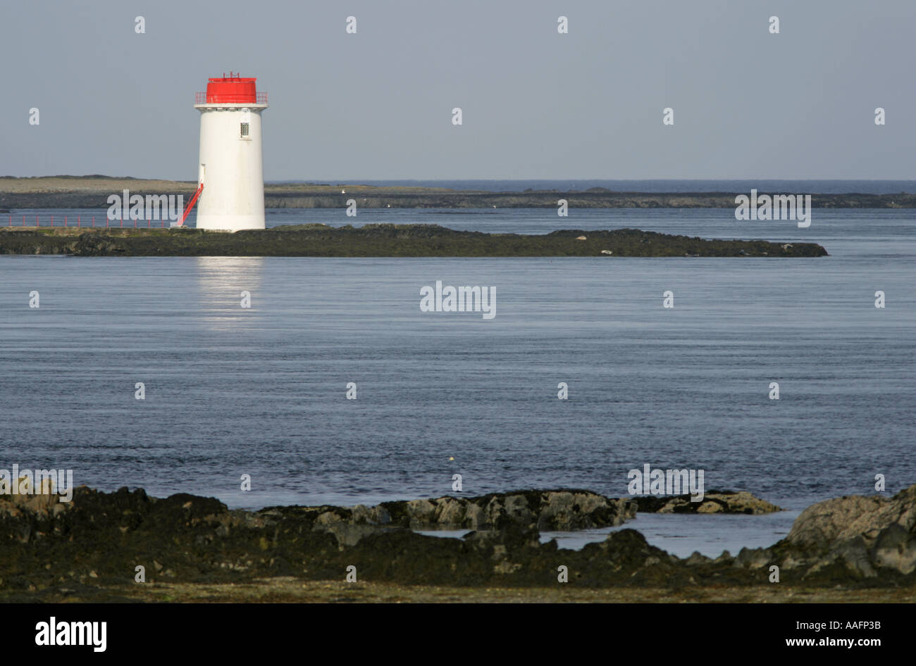 solar powered lighthouse at Angus Rock Strangford Lough County Down Northern Ireland - Stock Image