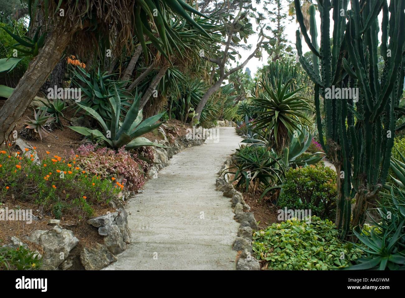 Exotic garden, Villa & Jardins Ephrussi de Rothschild ...