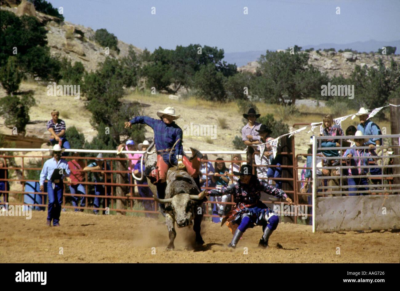 Cowboy Riding Bull Fruita Colorado USA Stock Photo