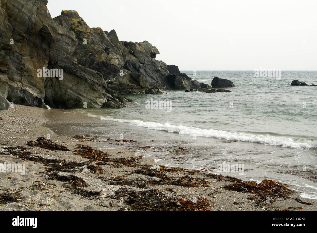 Port Wrinkle, Cornwall, UK. - Stock Image