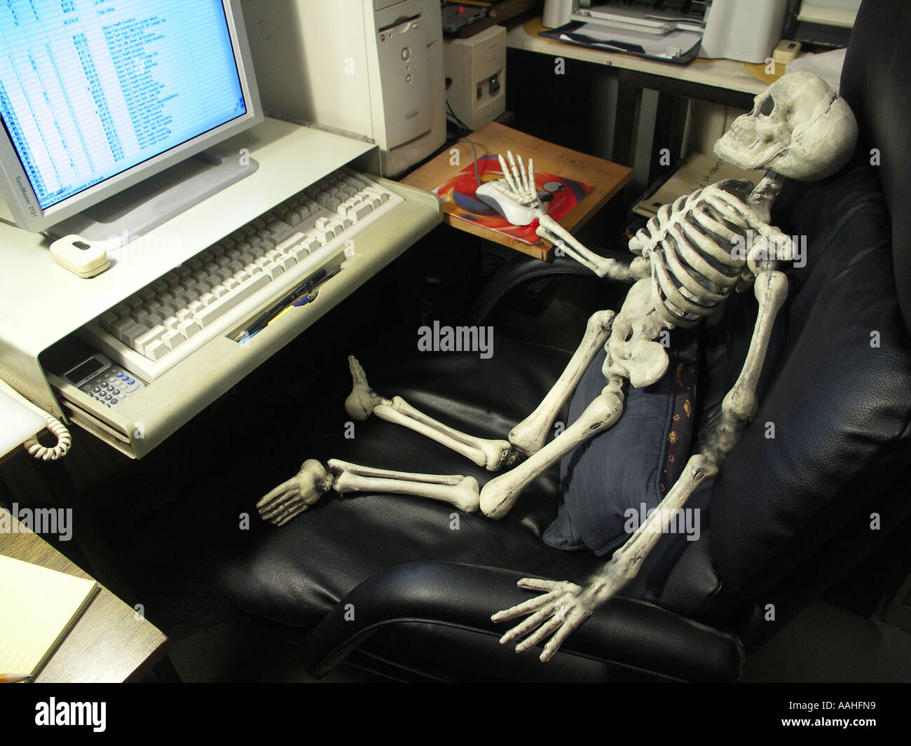 Skeleton Using a Computer Stock Photo - Alamy