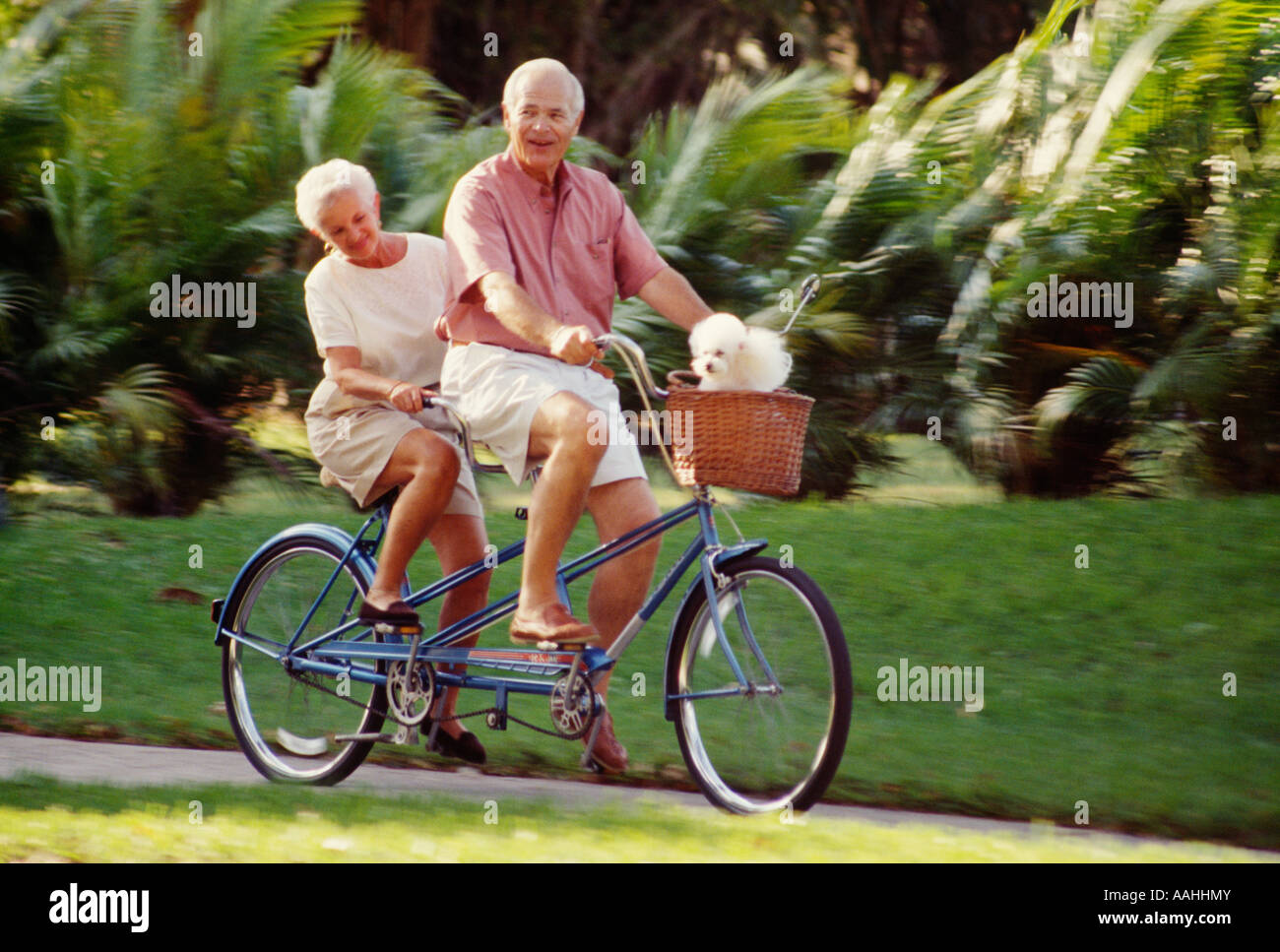 Senior couple riding bicycle - Stock Image