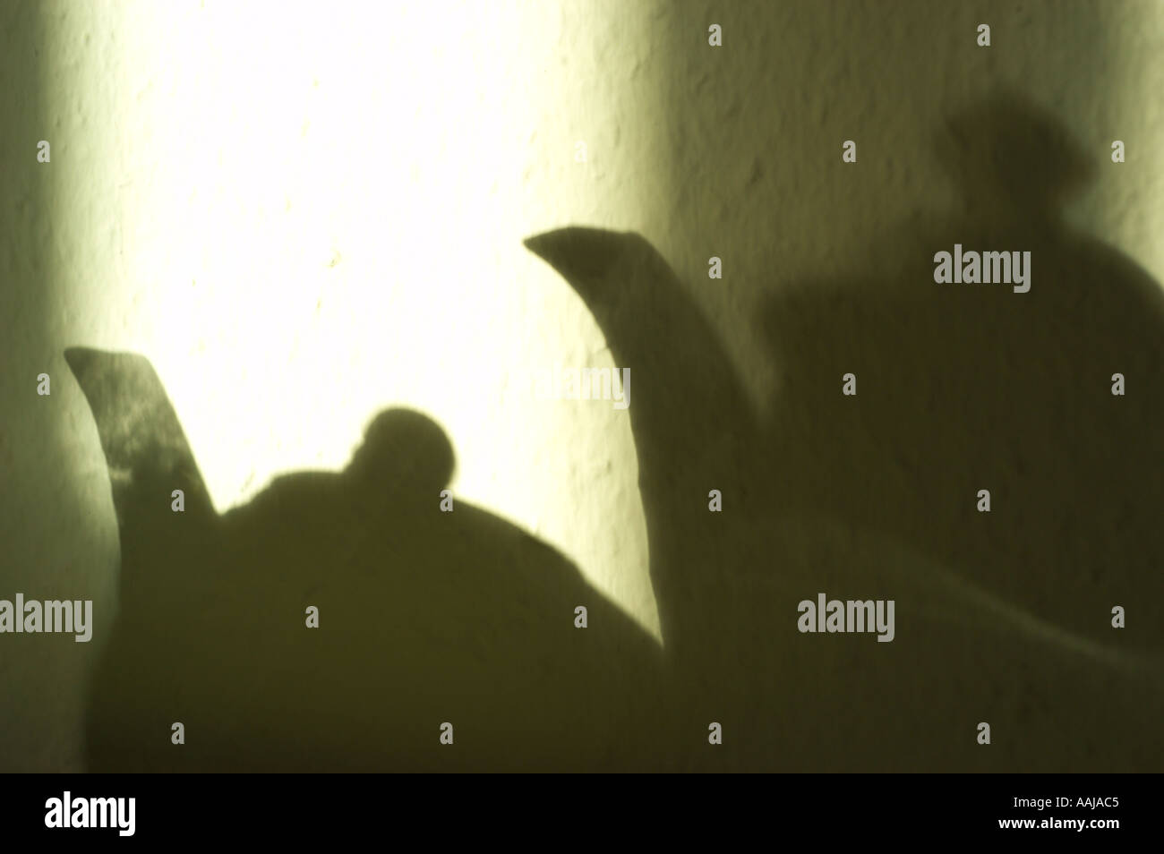 The morning sun is drawing the shaddow of a teapot and a coffepot on the wall - Stock Image