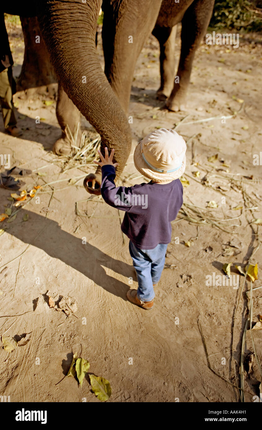 Boy meets elephant in the jungle, Nepal Stock Photo