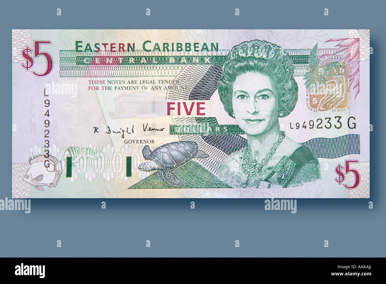 A 5 dollar bill from the EC or Eastern Caribbean. - Stock Image