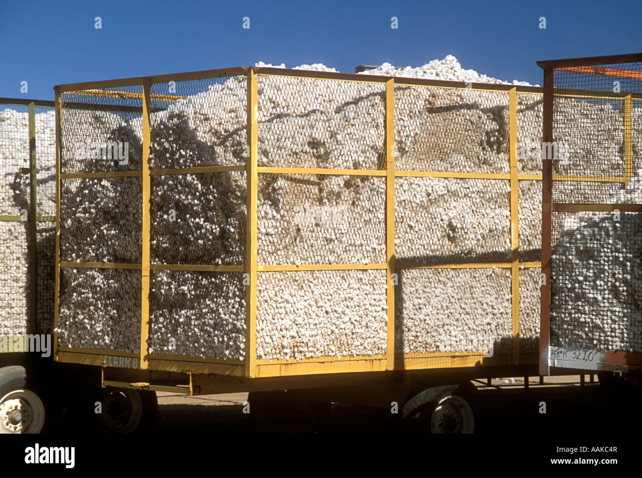 Truckloads of cotton ready for market Marana Arizona - Stock Image