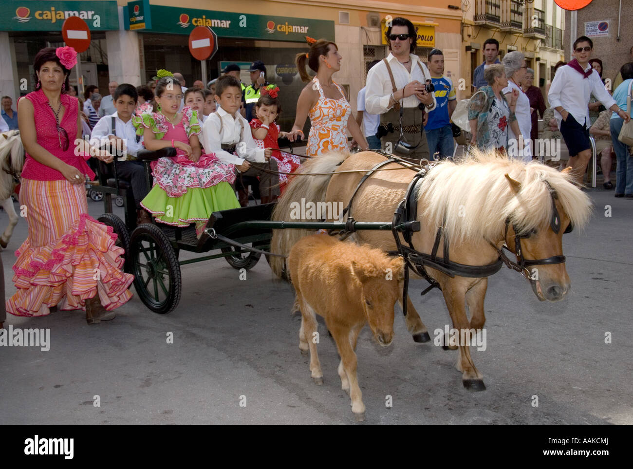 Pony with trap and foal travelling to the Romeria in Coin Andalucia Spain Festival in honor of the Virgin Fuensanta - Stock Image