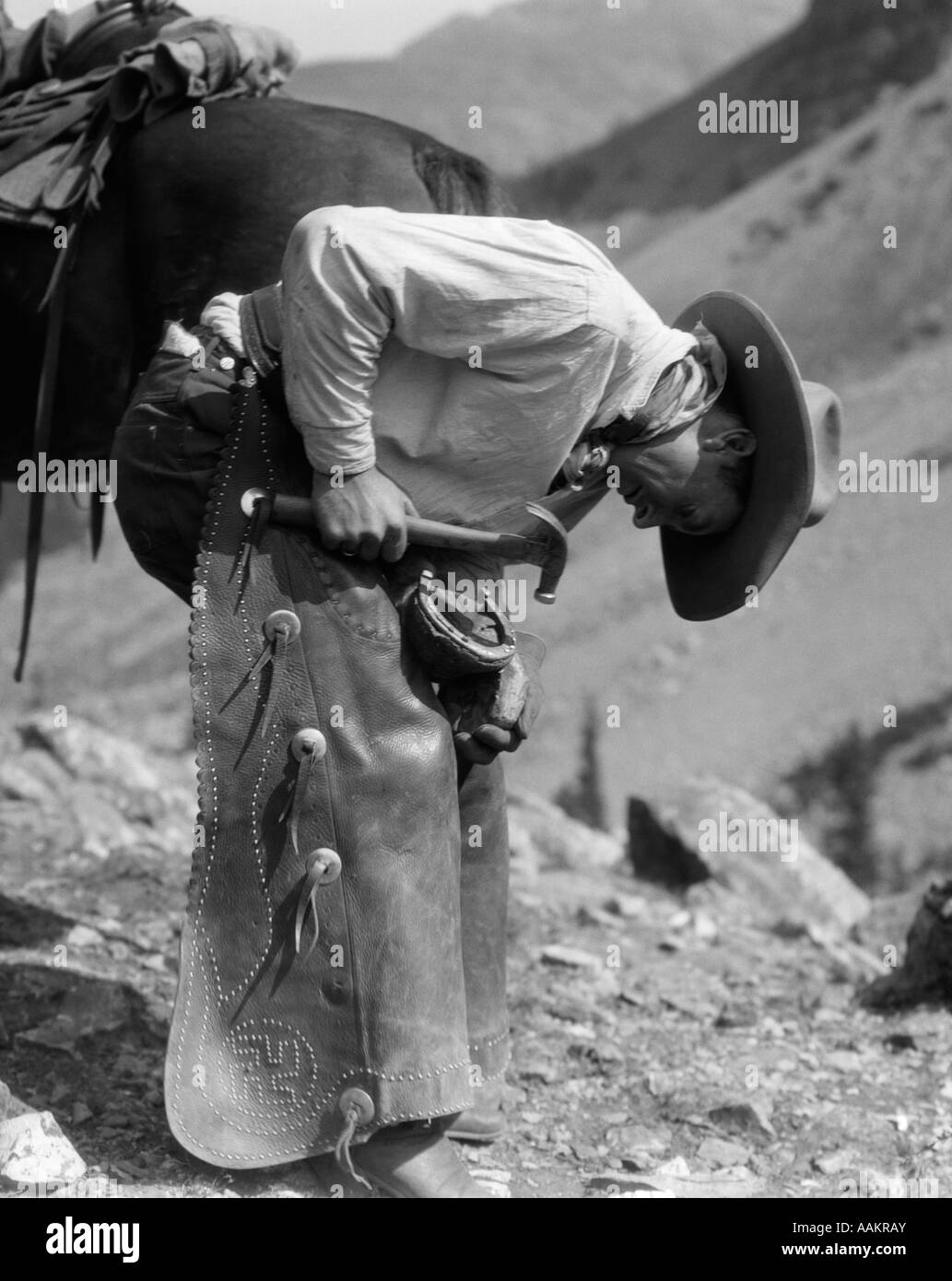 1930s COWBOY SHOEING A HORSE - Stock Image
