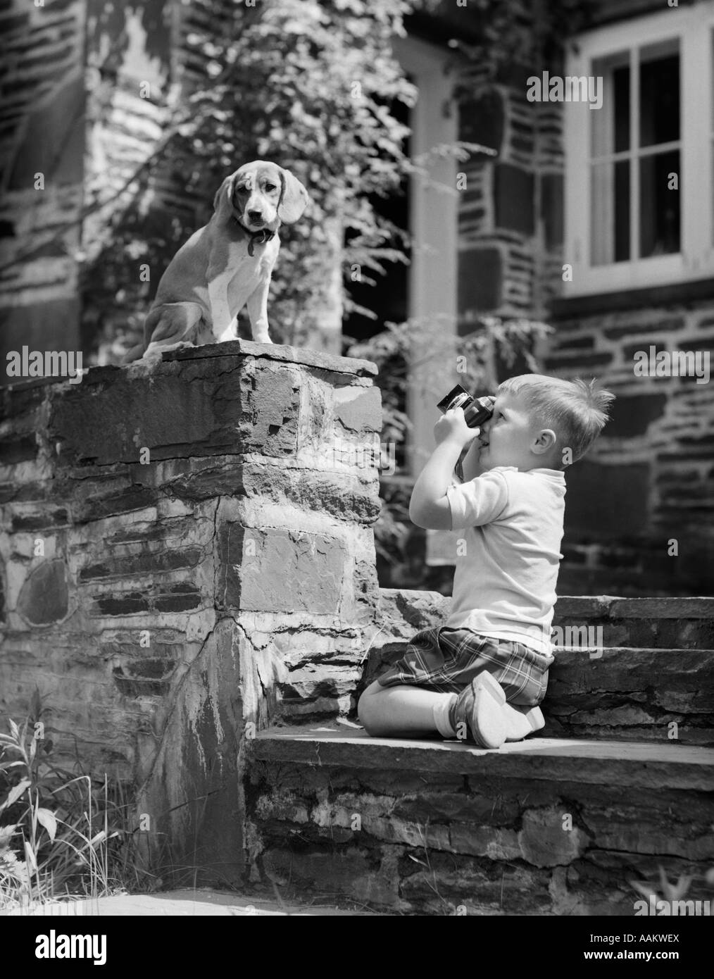 1950s YOUNG BOY KNEELING ON STONE SIDEWALK STAIRS FOCUSING CAMERA ON HOUND DOG PUPPY SITTING ON WALL - Stock Image