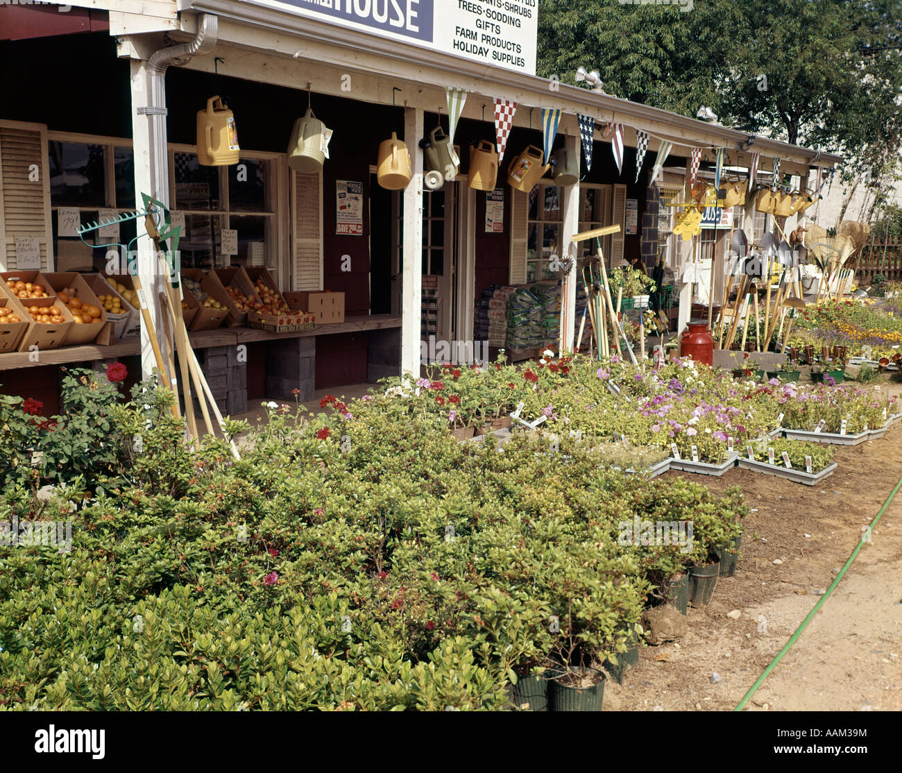 1960s FLOWERS GARDEN STORE COUNTRY MARKET - Stock Image