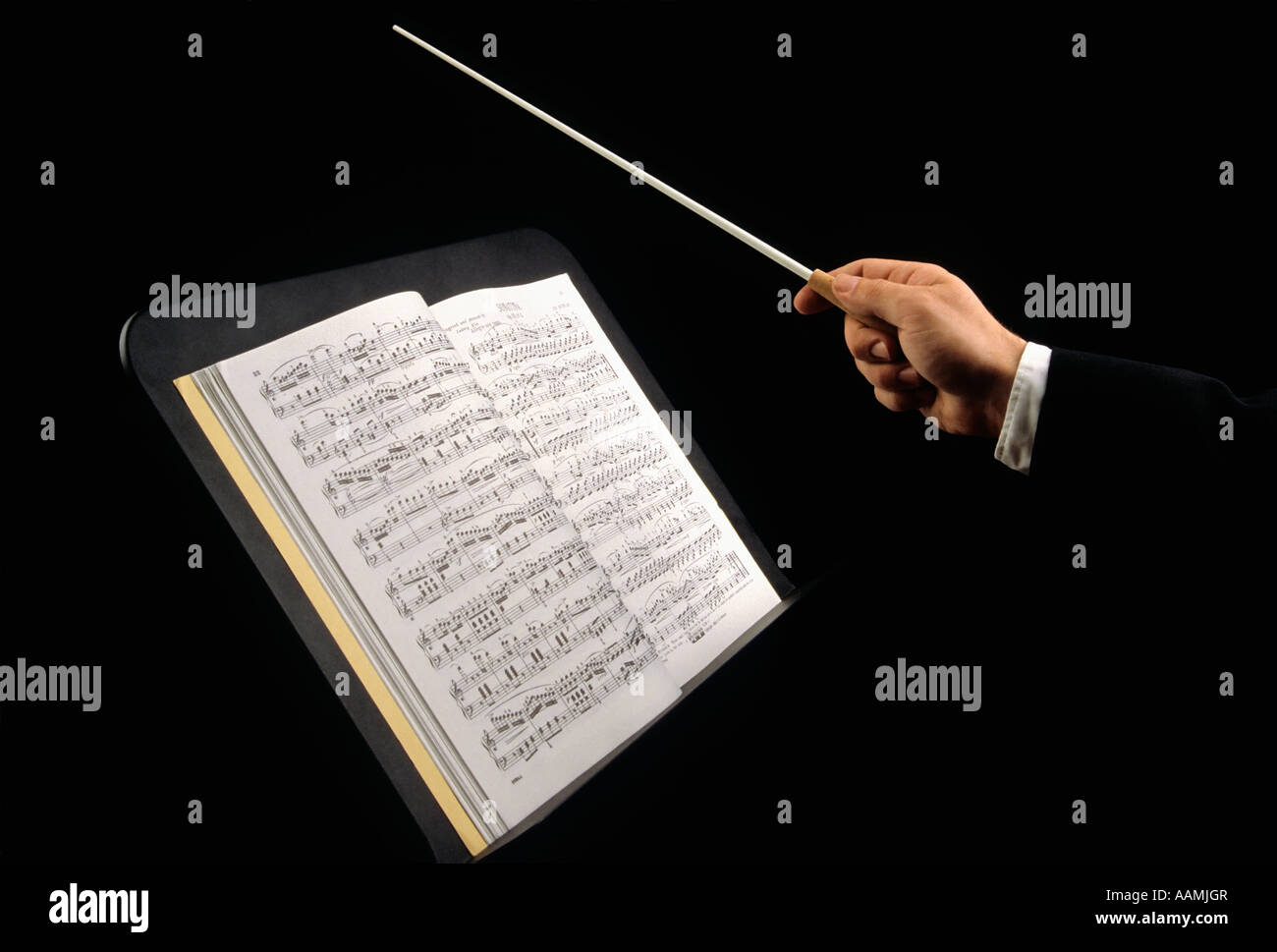 Conducting Orchestra - Stock Image