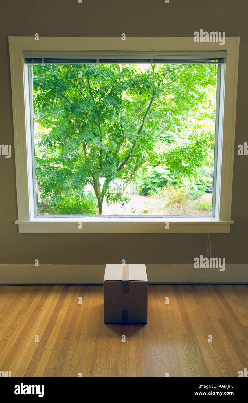 View out window to back yard with box in room - Stock Image