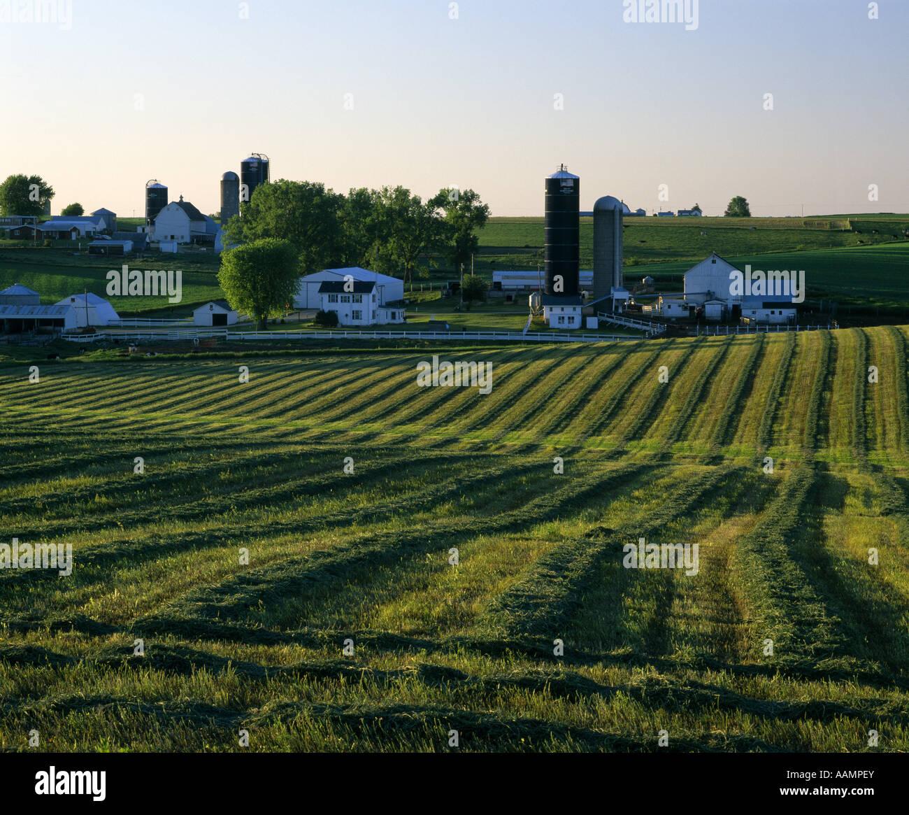 Wisconsin Dairy Farm Silos Barns Stock Photos & Wisconsin