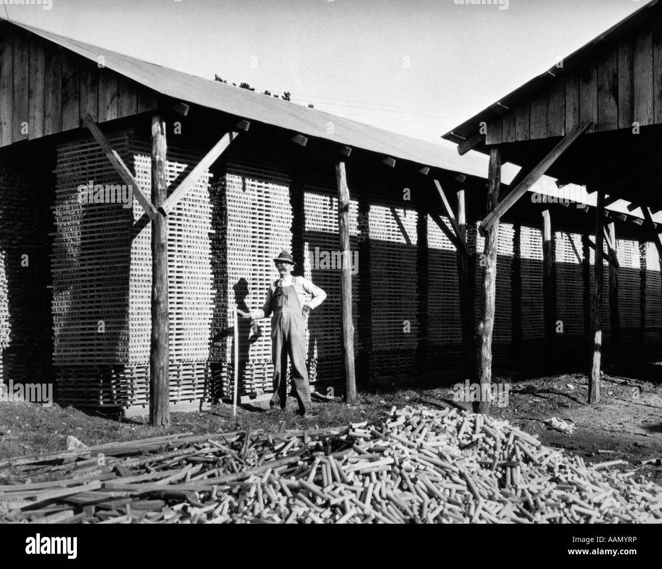 1930s WORKER PILES HICKORY STICKS AT GOLF CLUB AND CHAIR RUNG FACTORY IN ARKANSAS - Stock Image