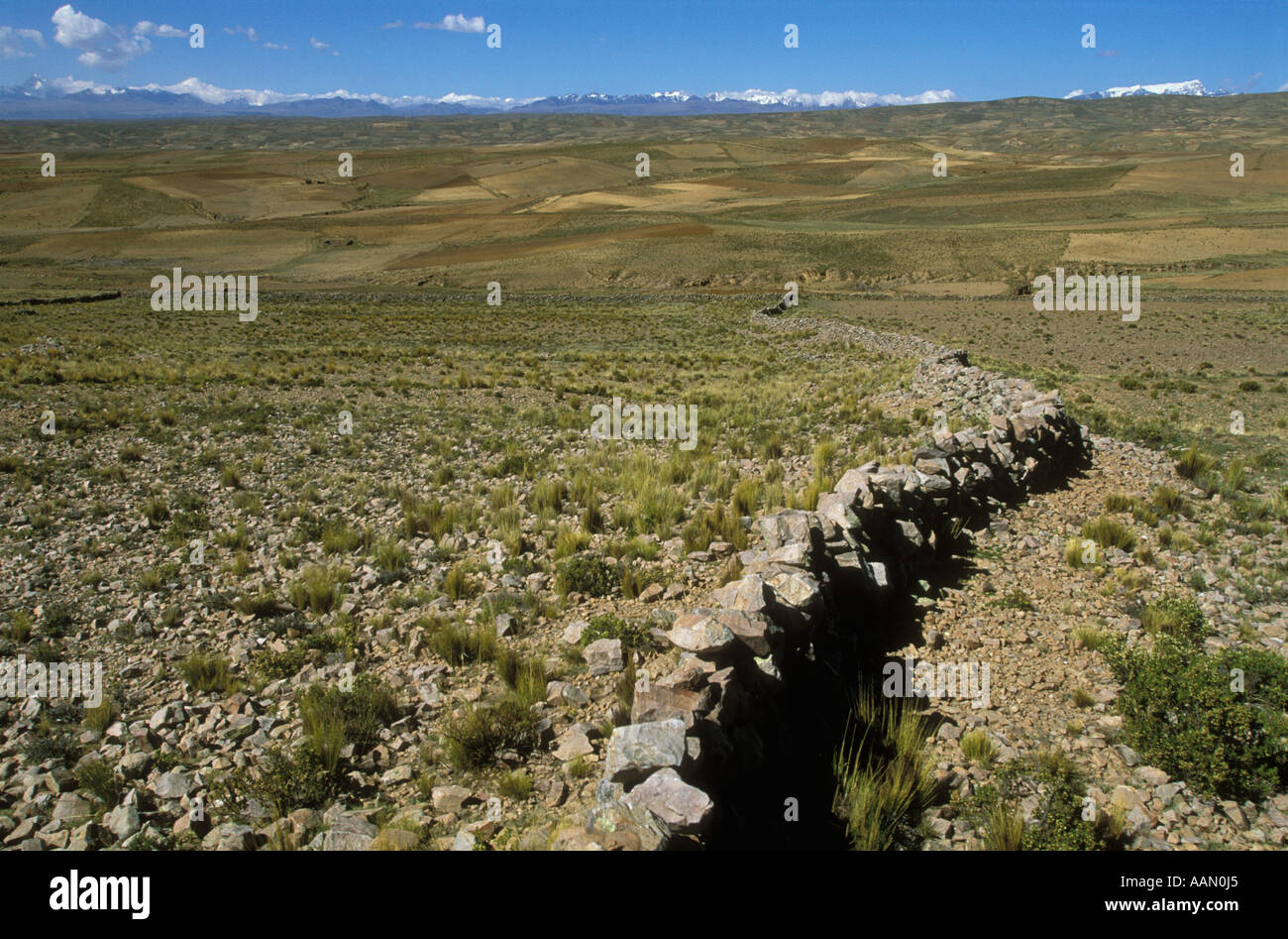 A stone fence stretches across the fields of the  Altiplano Bolivia - Stock Image