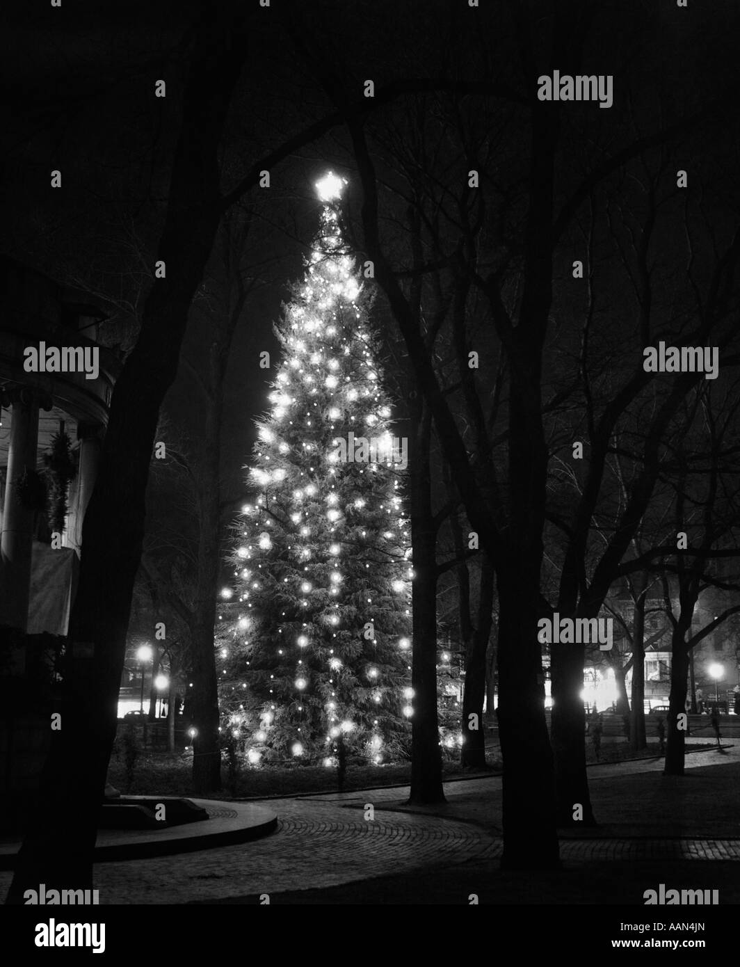 1950s TALL CHRISTMAS TREE LIT UP IN MIDDLE OF TOWN SQUARE - Stock Image