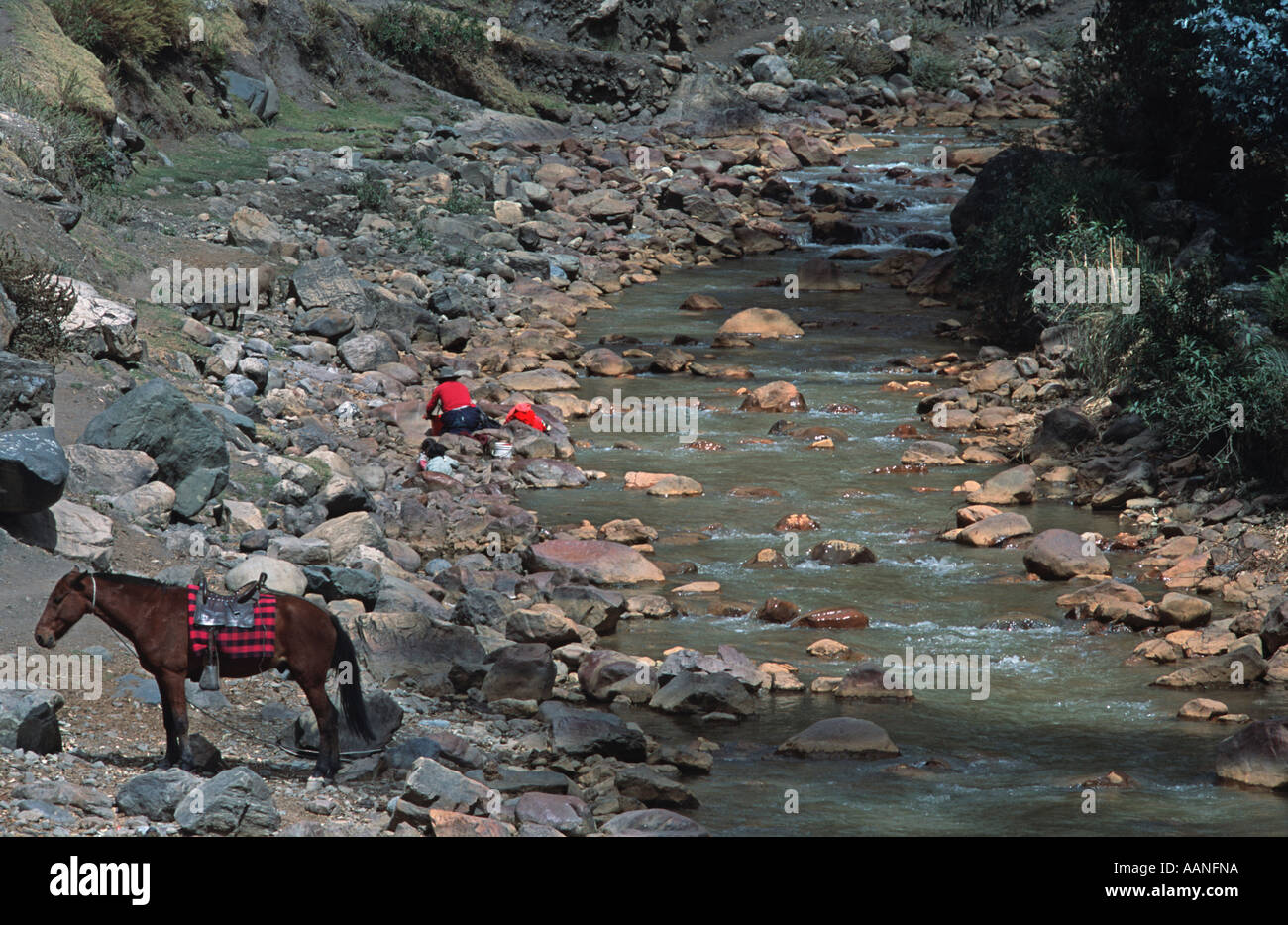 Woman washing clothes in a river Horse in foreground Chavin de Huantar Northern Peru South America - Stock Image