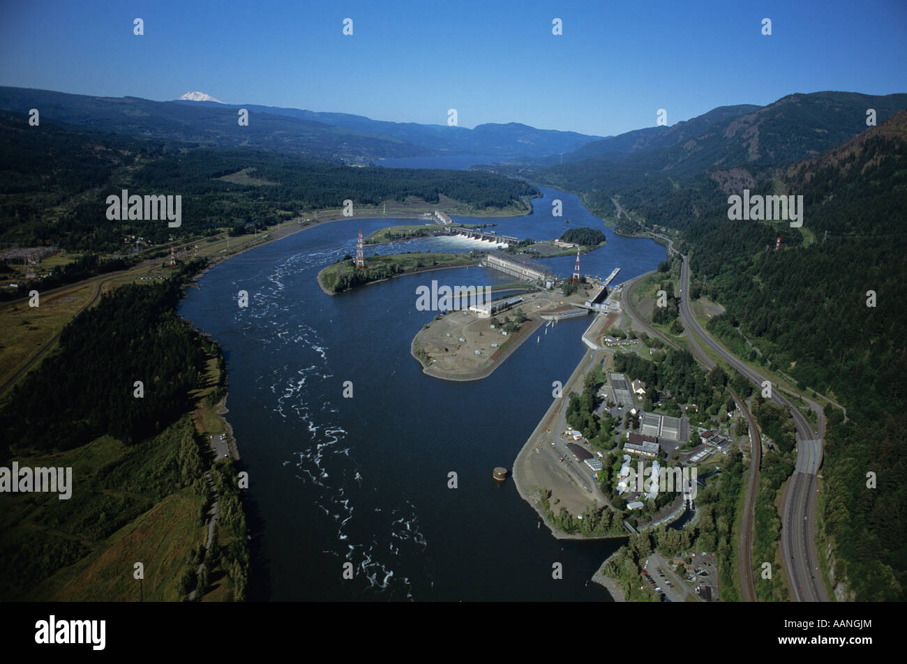 Bonneville dam stock photos bonneville dam stock images for Bonneville dam fish counts 2017