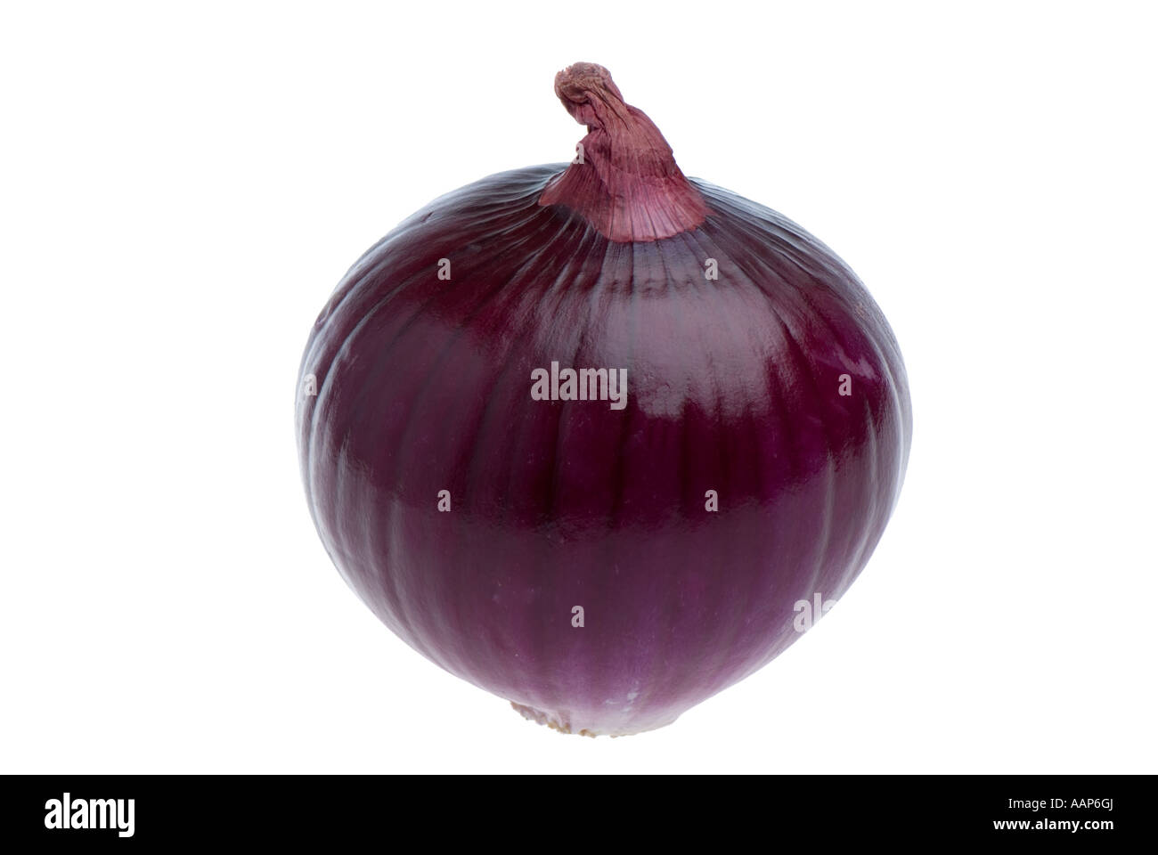 Red onion cutout on white background - Stock Image