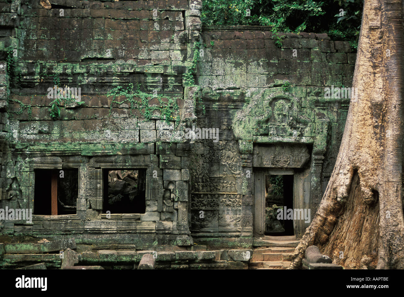 Cambodia, Angkor Wat, Ta Prohm Stock Photo