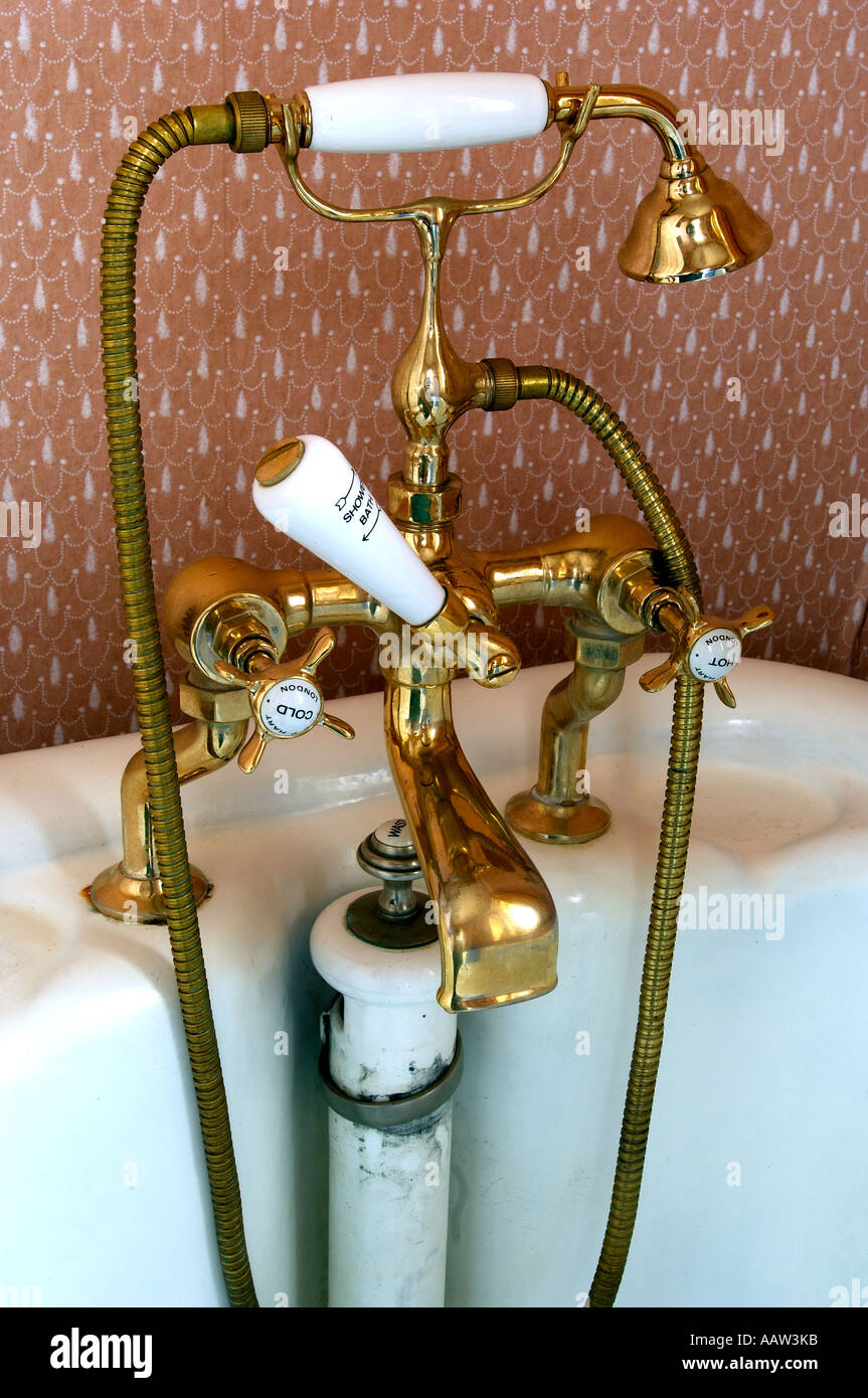Edwardian brass bath fixture with mixer taps shower attachment and ...