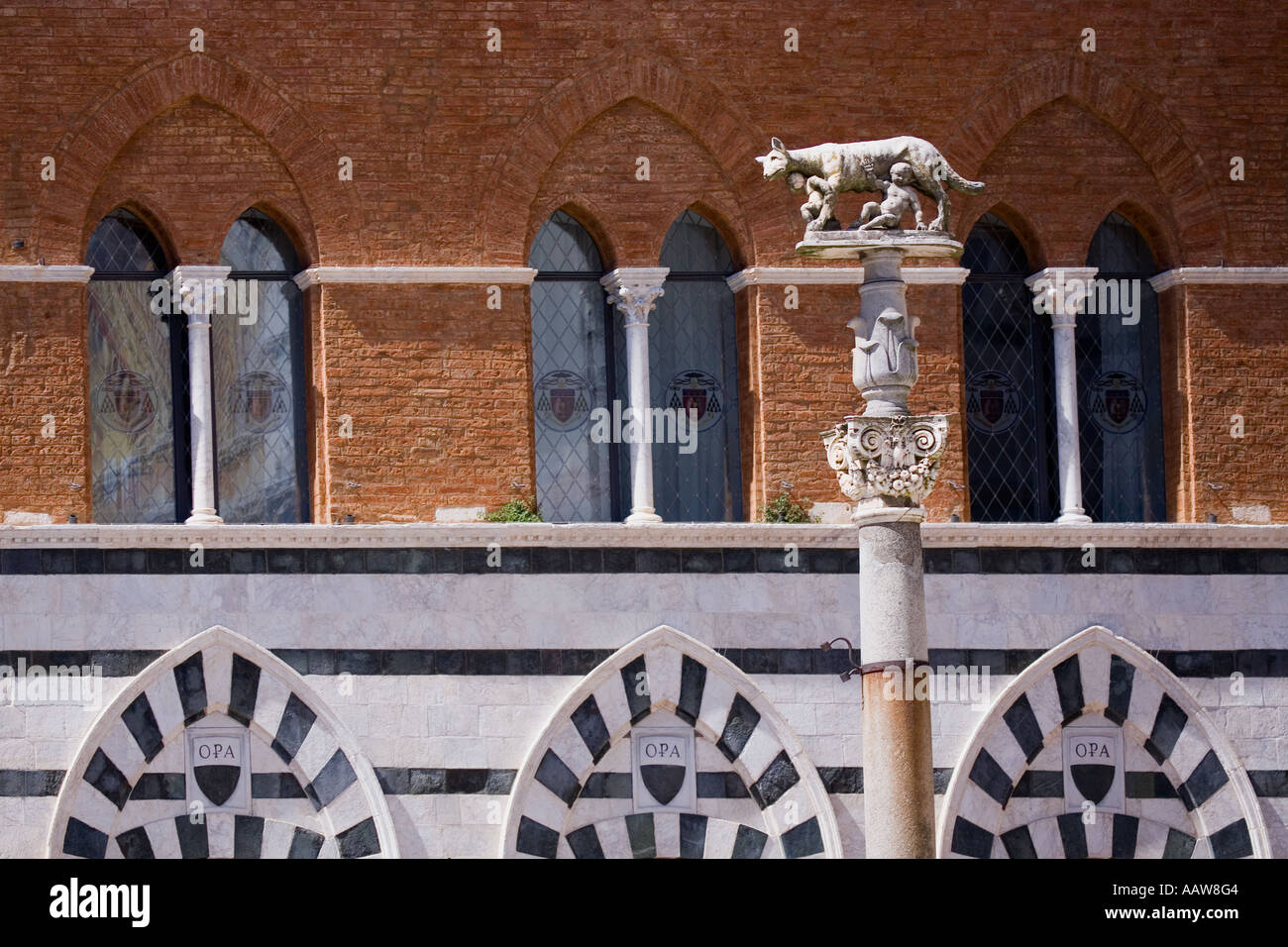 Statue of Wolf feeding Romulus and Remus in the Palazzo Duomo Square Siena Italy Europe EU - Stock Image