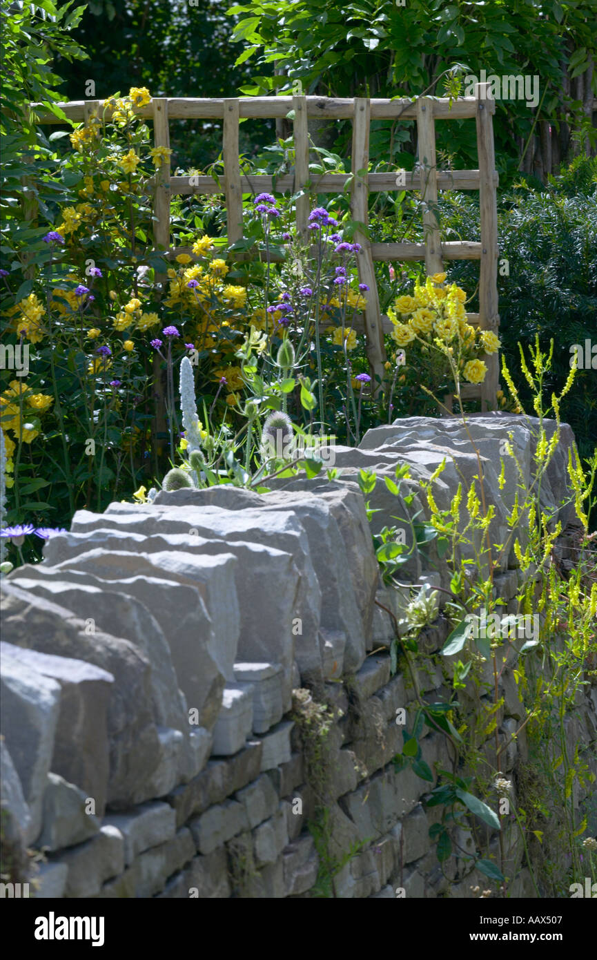 Dry Stone Drystone Wall Bounding Edge Of Garden With Trellis And Verbascum  With Roses   Stock