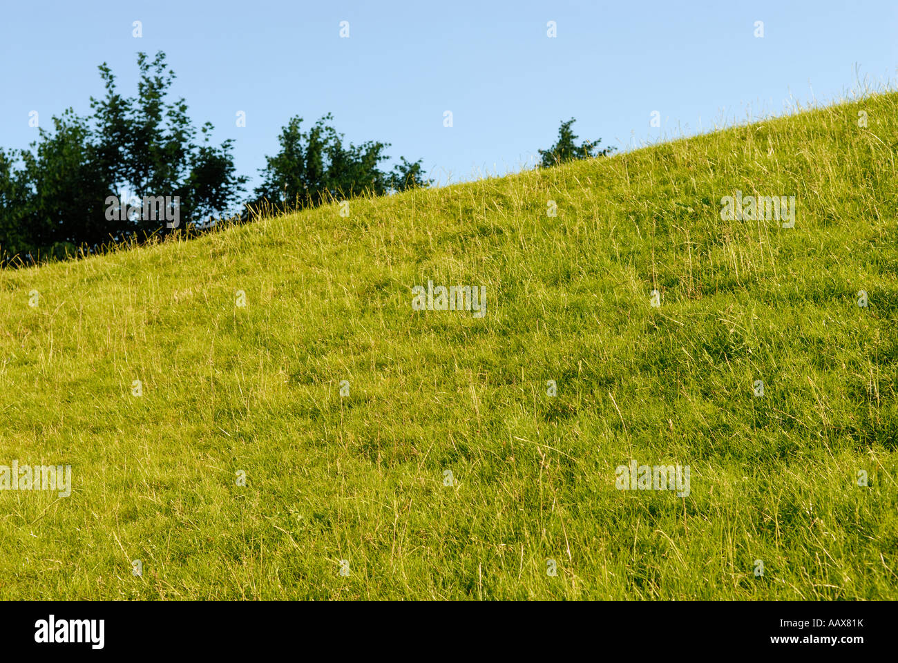 GREEN HILL - Stock Image